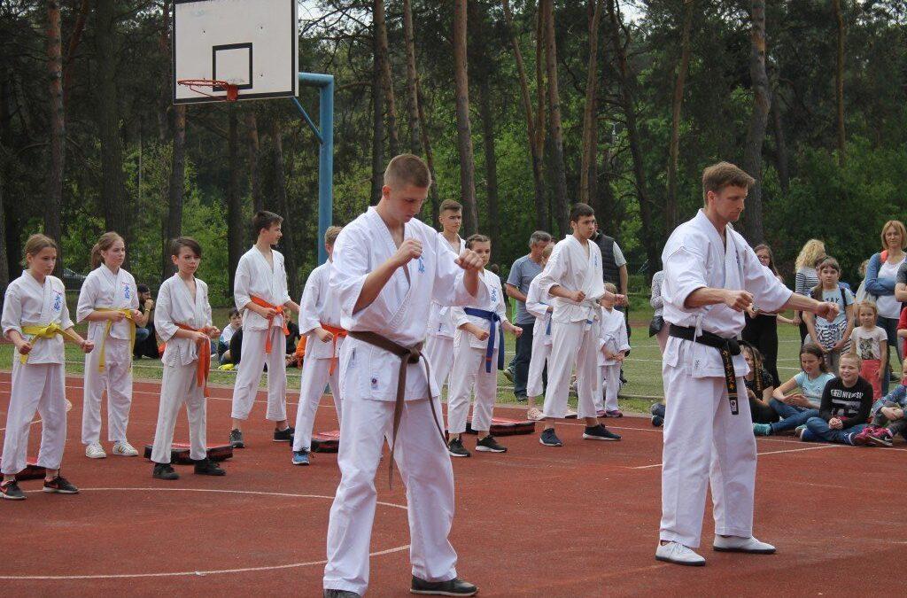 """XV Festyn Rodzinny """"Trójki""""-pokaz karate, Kozienice 18 maja 2019 r."""