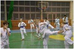 Egzamin-na-stopnie-szkoleniowe-kyu-25-stycznia-2014-_861022