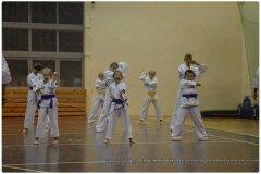Egzamin-na-stopnie-szkoleniowe-kyu-25-stycznia-2014-_862617