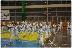 Egzamin-na-stopnie-szkoleniowe-kyu-25-stycznia-2014-_863749