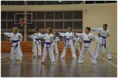 Egzamin-na-stopnie-szkoleniowe-kyu-25-stycznia-2014-_867366