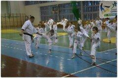 Egzamin-na-stopnie-szkoleniowe-kyu-25-stycznia-2014-_867510