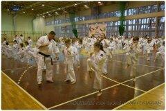 Egzamin-na-stopnie-szkoleniowe-kyu-25-stycznia-2014-_869507