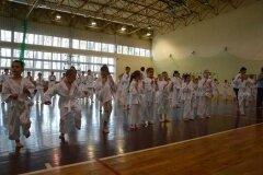 Egzamin-na-stopnie-szkoleniowe-kyu---Kozienice-16062013_833609