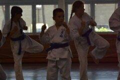 Egzamin-na-stopnie-szkoleniowe-kyu---Kozienice-16062013_834360