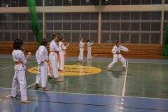 Egzamin-na-stopnie-szkoleniowe-kyu-Kozienice-2013_753039