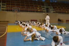 Egzamin-na-stopnie-szkoleniowe-kyu-Kozienice-2013_755270