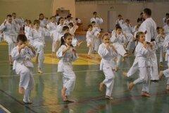 Egzamin-na-stopnie-szkoleniowe-kyu-Kozienice-2013_756917