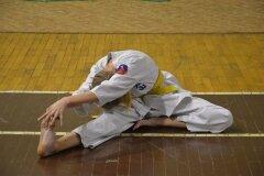 Egzamin-na-stopnie-szkoleniowe-kyu-Kozienice-2013_759061