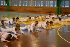 Egzamin-na-stopnie-szkoleniowe-kyu-Kozienice-2013_759279