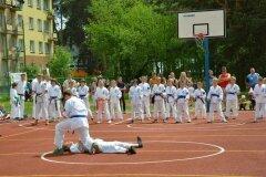 """IX-Festyn-Rodzinny-""""Trojki""""-18052013_821232"""