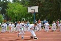 """IX-Festyn-Rodzinny-""""Trojki""""-18052013_825820"""