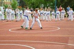 """IX-Festyn-Rodzinny-""""Trojki""""-18052013_827848"""