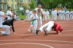 """IX-Festyn-Rodzinny-""""Trojki""""-18052013_828820"""