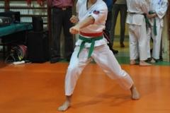 Mikolajkowy-Turniej-Oyama-Karate-w-konkurencji-kata-Garbatka--Letnisko-8122012-_73604