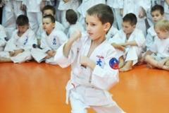 Mikolajkowy-Turniej-Oyama-Karate-w-konkurencji-kata-Garbatka--Letnisko-8122012-_738257