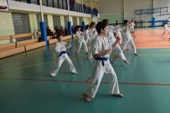Mistrzostwa-Zwolenia-Oyama-Karate-w-Kata---2032013_765573