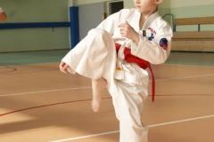 Mistrzostwa-Zwolenia-Oyama-Karate-w-konkurencji-kata_596439