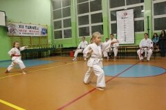 XII-Turniej-NKSW-Wulkan-w-konkurencji-kata_564013