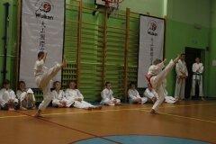 XII-Turniej-NKSW-Wulkan-w-konkurencji-kata_565429