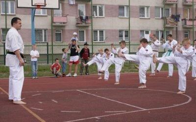 Pokazy sportowe Festyn Trójki 2008