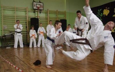 Pokazy sportowe Festyn Trójki 2009